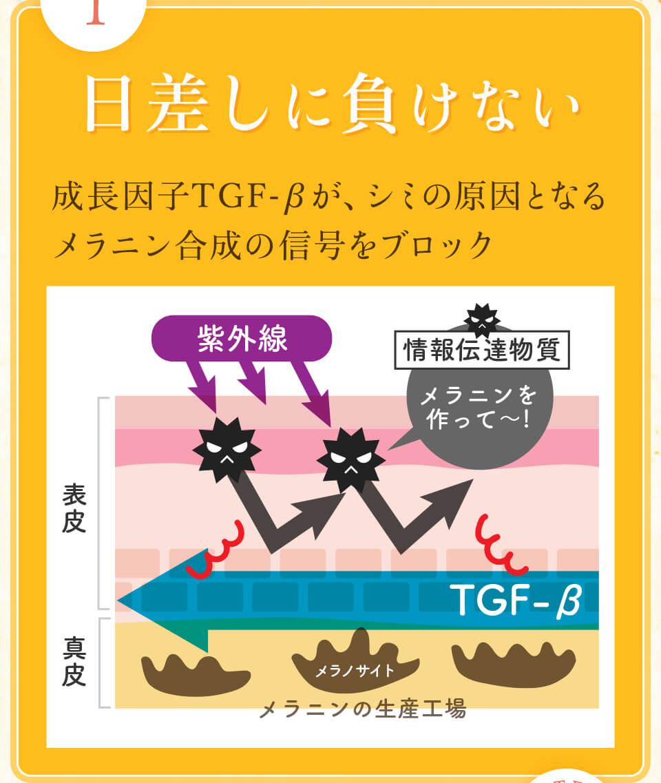 日差しに負けない。成長因子TGF-βがシミの原因となるメラニン合成の信号をブロック