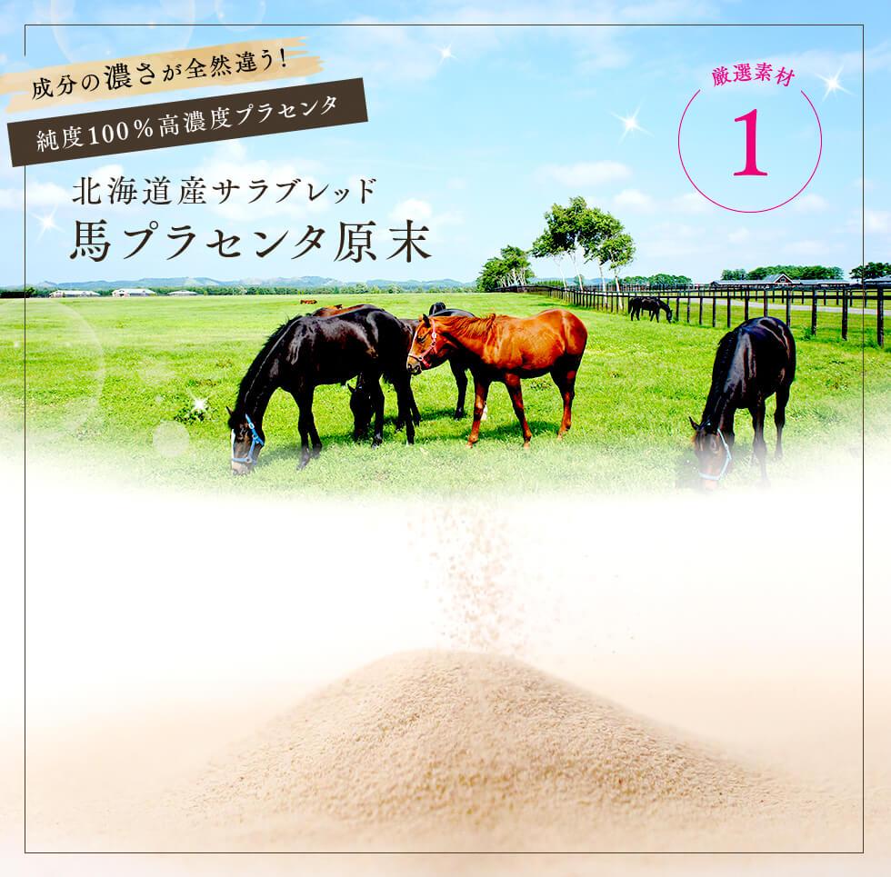 北海道産サラブレット馬プラセンタ原末