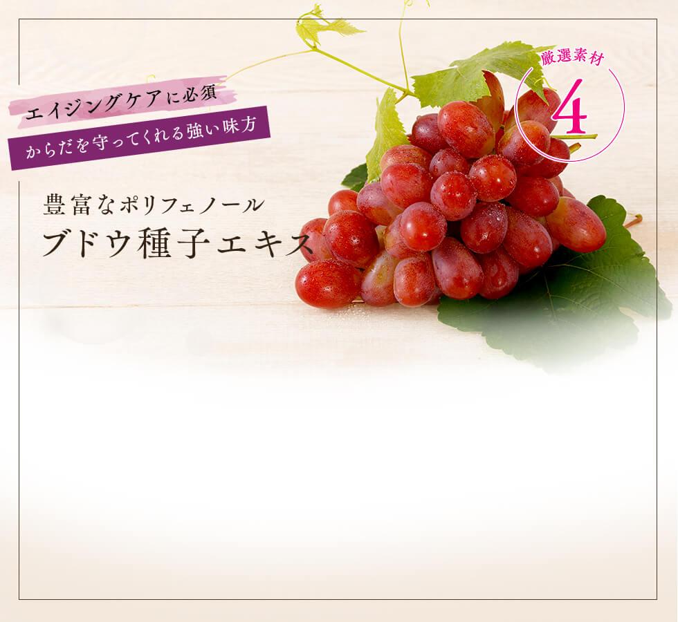 豊富なポリフェノールブドウ種子エキス