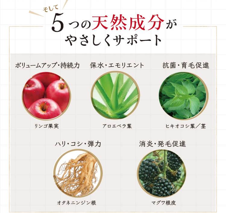 そして5つの天然成分がやさしくサポート!リンゴ果実:ボリュームアップ・持続力。オタネニンジン根:ハリ・コシ・弾力。アロエベラ葉:保水・エモリエント。マグワ根皮:消炎・発毛促進。ヒキオコシ葉/茎:抗菌・育毛促進。