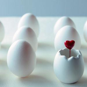 女性の卵子の数は決まっていて、老化する?!