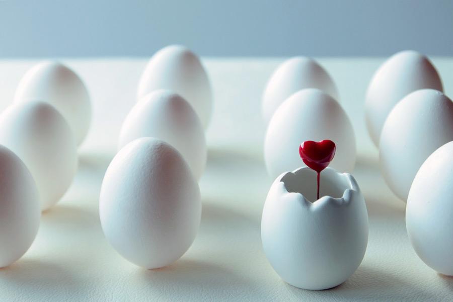 女性の卵の数は決まっている