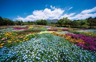 九州のおすすめ絶景スポットその1