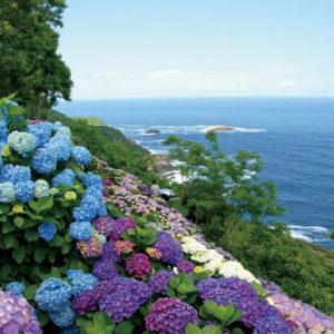 九州のおすすめ絶景スポットその2